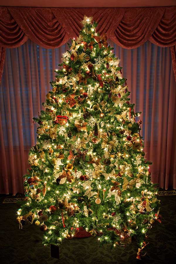 amazing-decorated-and-lighted-christmas-tree