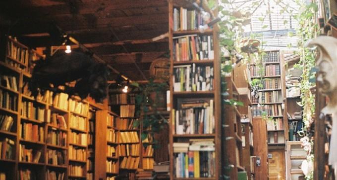"""""""მწვანე ბიბლიოთეკა"""" – """"მწვანე მუშტის"""" ახალი ინიციატივა"""