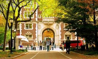 რომელ უნივერსიტეტებში სწავლობდნენ მილიარდერები?