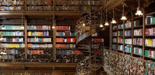 თბილისში ღამის ბიბლიოთეკების გახსნა იგეგმება