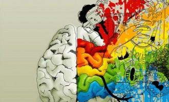 10 საინტერესო ფაქტი ადამიანის ტვინზე