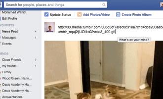 როგორ ავტვირთოთ გიფები facebook-ზე?
