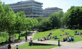 სტიპენდიები გერმანიაში საუნივერსიტეტო პროგრამებზე სასწავლებლად