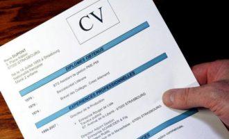 როგორი უნდა იყოს იდეალური CV