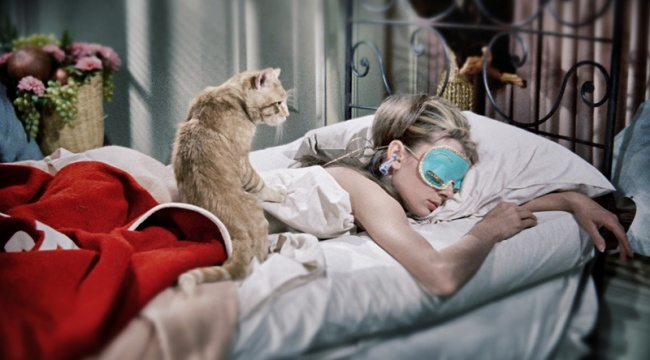 11702510-audrey-hepburn-cat-breakfast-tiffanys-sleeping-1487156543-650-2acddde464-1487237919