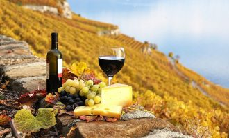 """საზაფხულო სკოლა სტუდენტებისთვის საფრანგეთში – """"ღვინო, კულტურა და მემკვიდრეობა"""""""