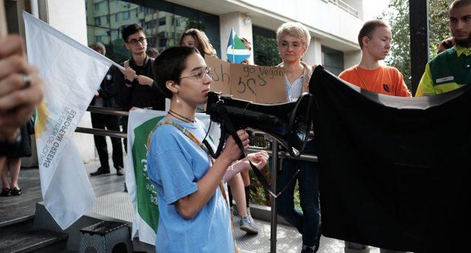 """ქართველი სტუდენტები და მოსწავლეები გლობალურ აქციას """"გაიფიცე კლიმატისთვის"""" შეუერთდნენ"""