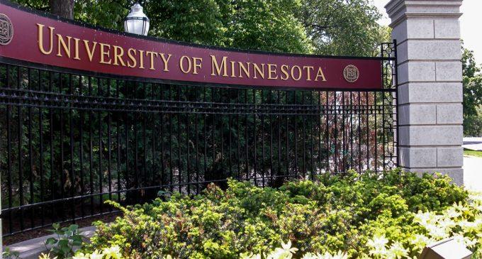 ანაზღაურებადი სამუშაო-სასწავლო სტაჟირება მინესოტას უნივერსიტეტში