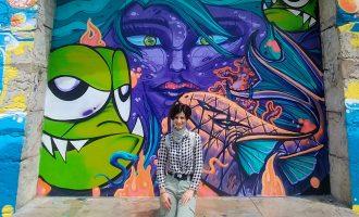 სტუდენტური ამბები – საბაუნის სტუდენტის შთაბეჭდილებები